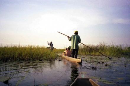 okavango36