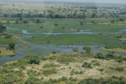 okavango40