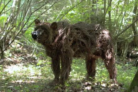 urso-galhos