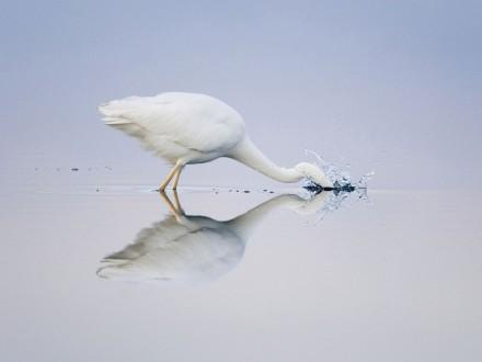 agua-espelho9