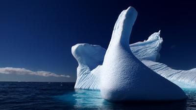 Melchior Island antartica - Ryan Roxx